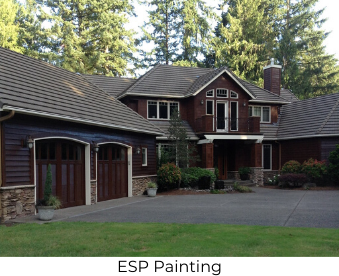 ESP Painting Website